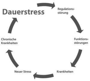 kreislauf_stress